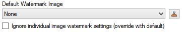Default image watermark options