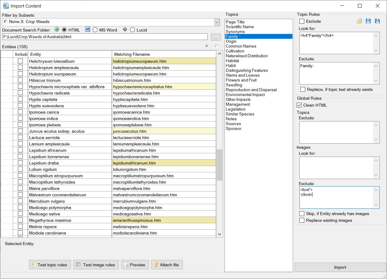 Import Content (HTML, MS Word or Lucid) interface.