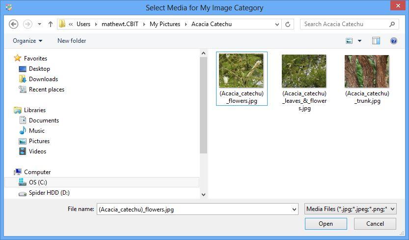 Media browser dialog
