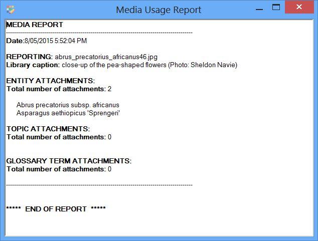 Media Usage report