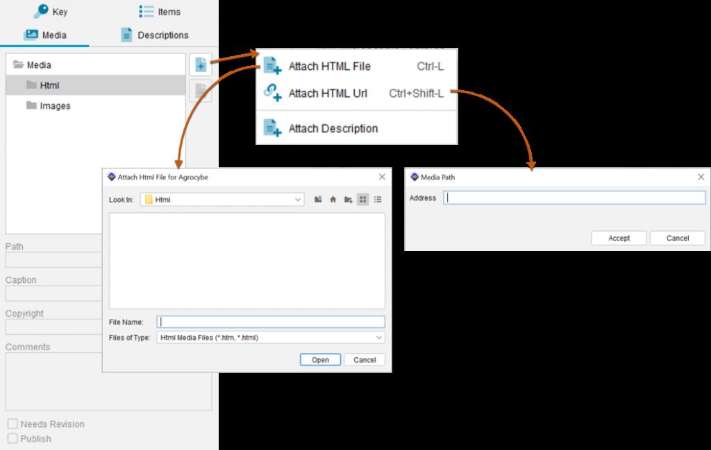 Lucid Builder attach HTML media options