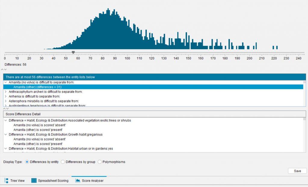 Lucid Builder Score Analyser example