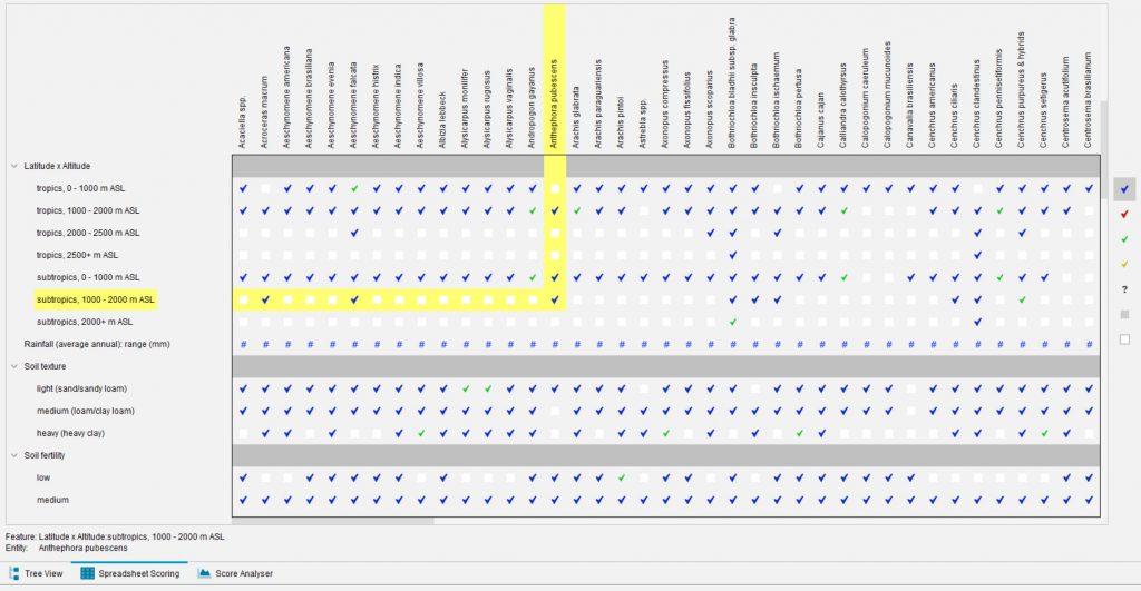 Lucid Builder Spreadsheet scoring example